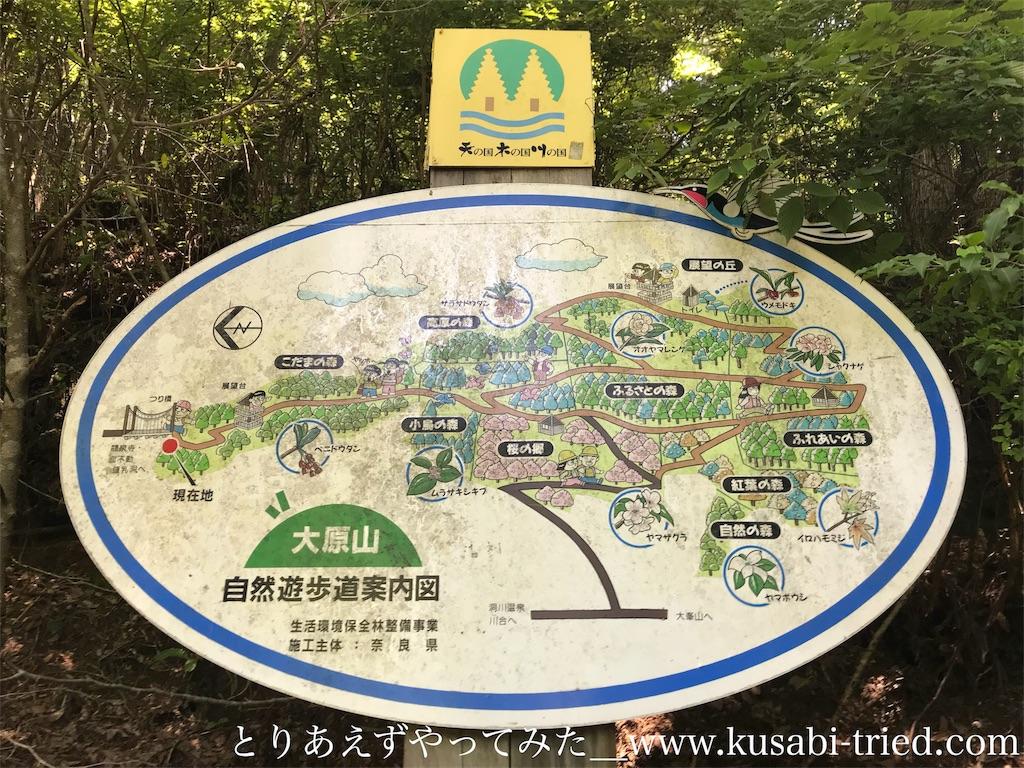 f:id:kusabii:20180806220624j:image