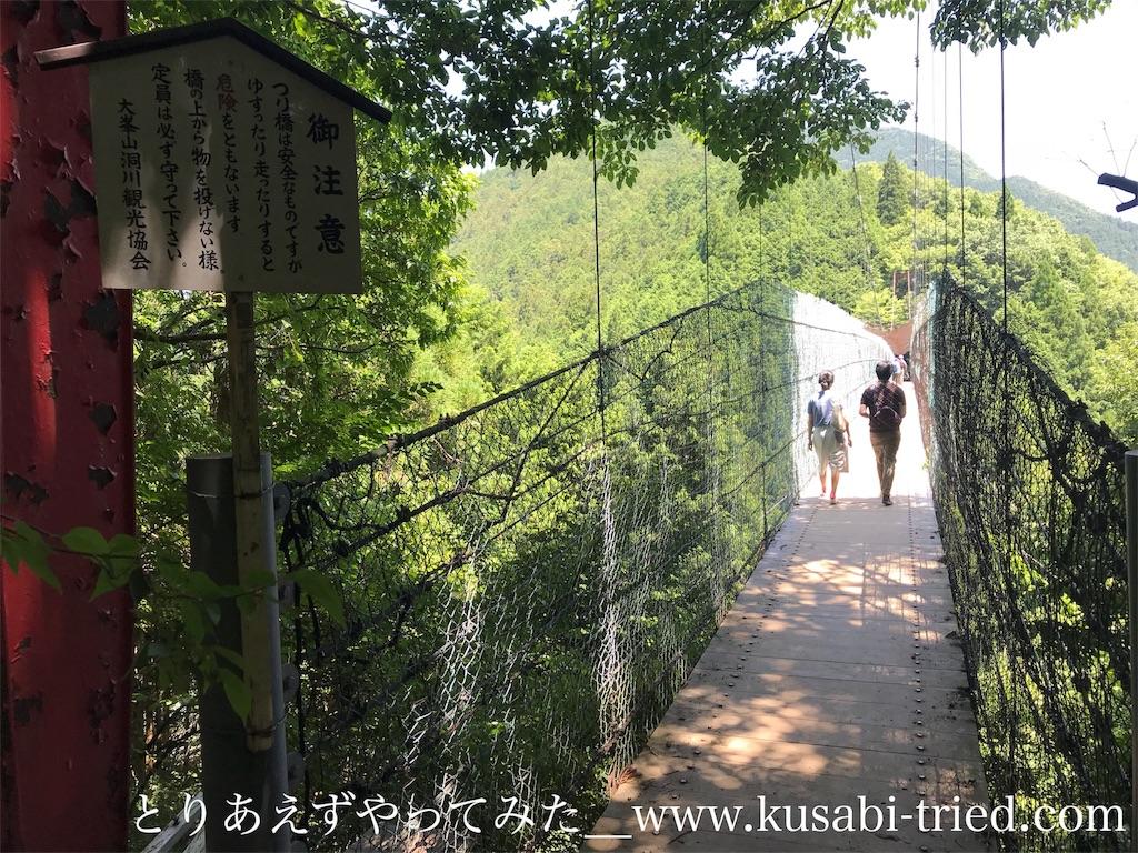 f:id:kusabii:20180806220628j:image