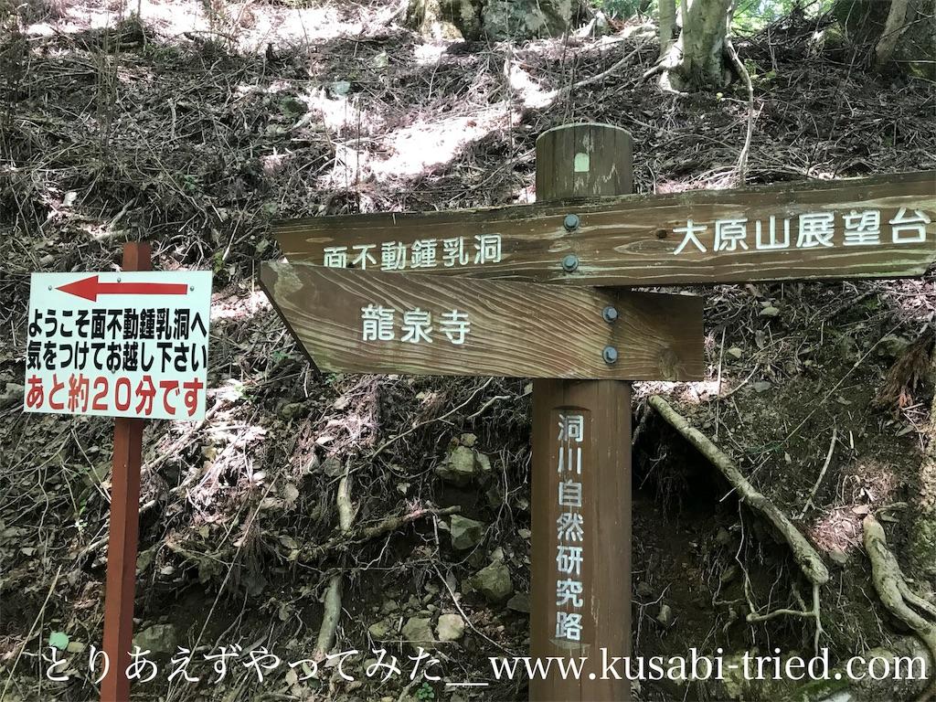 f:id:kusabii:20180806221017j:image