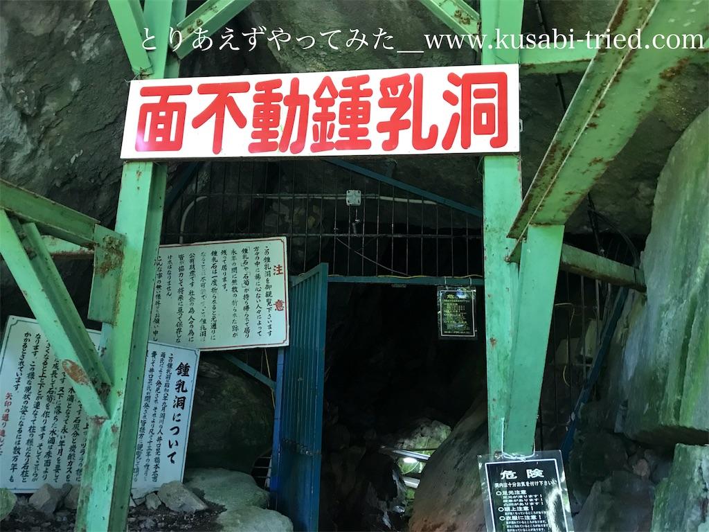 f:id:kusabii:20180806223606j:image