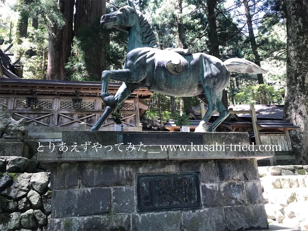 f:id:kusabii:20180807085413j:image