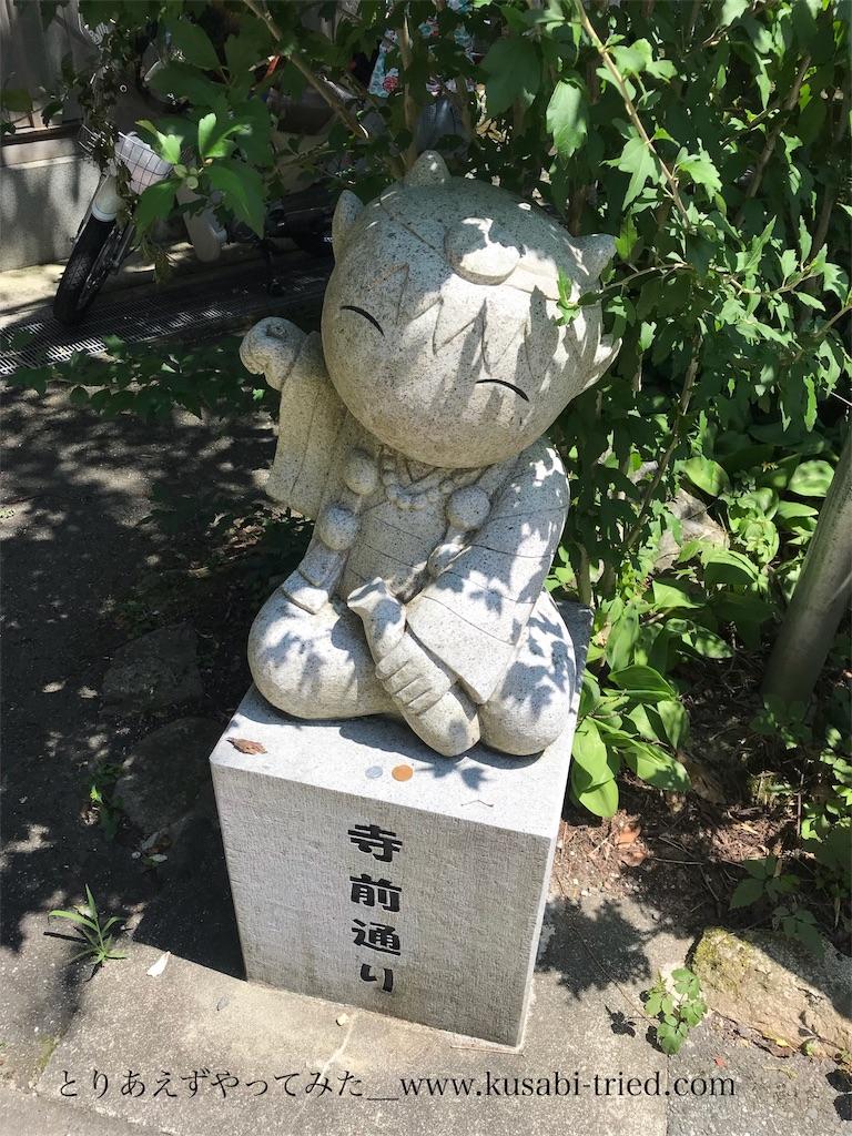 f:id:kusabii:20180807085813j:image