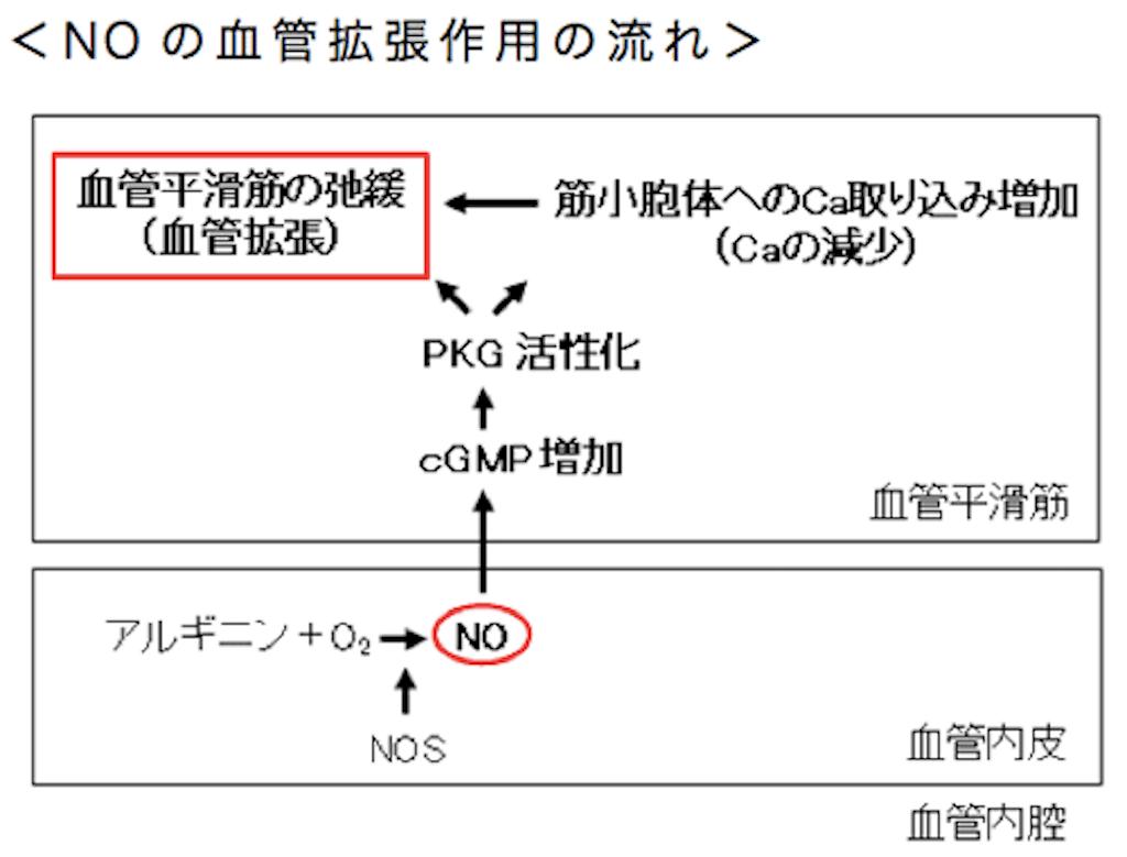 f:id:kusabii:20191226161226p:image