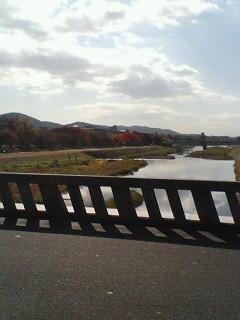 f:id:kusaboshi:20061115115827j:image