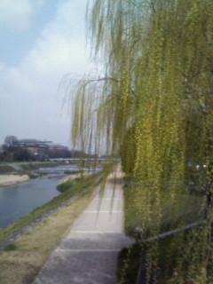 f:id:kusaboshi:20070328111301j:image