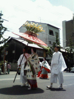 f:id:kusaboshi:20070515115612j:image