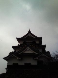 f:id:kusaboshi:20071115220145j:image