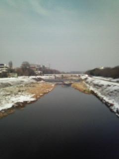 f:id:kusaboshi:20080210105122j:image
