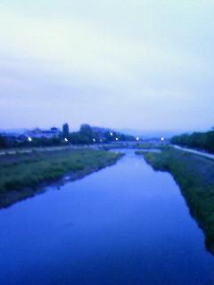 f:id:kusaboshi:20080501183900j:image
