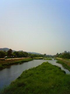 f:id:kusaboshi:20080507095500j:image