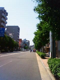 f:id:kusaboshi:20080518101300j:image