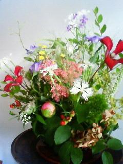 f:id:kusaboshi:20080630090600j:image