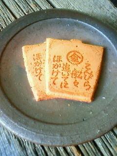 f:id:kusaboshi:20080723105500j:image