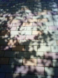 f:id:kusaboshi:20080831105200j:image
