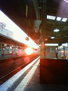 f:id:kusaboshi:20081113165500j:image