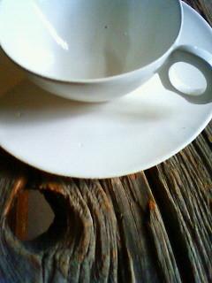 f:id:kusaboshi:20081117145800j:image