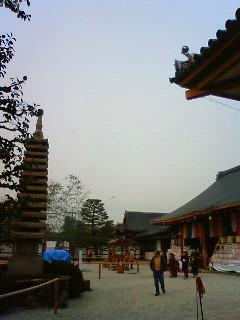 f:id:kusaboshi:20090203100800j:image