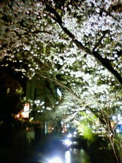 f:id:kusaboshi:20090402205000j:image