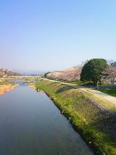 f:id:kusaboshi:20090406091200j:image