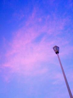 f:id:kusaboshi:20090808190800j:image