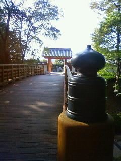 f:id:kusaboshi:20091015145400j:image