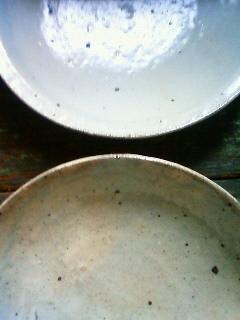 f:id:kusaboshi:20100523120600j:image