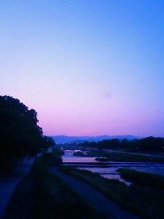 f:id:kusaboshi:20100611191900j:image