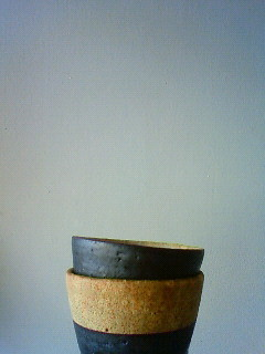 f:id:kusaboshi:20100723152900j:image