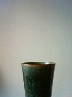 f:id:kusaboshi:20100726162800j:image