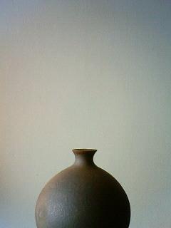 f:id:kusaboshi:20100814093700j:image