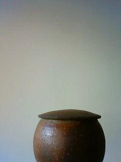 f:id:kusaboshi:20101026125300j:image