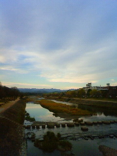f:id:kusaboshi:20101216154100j:image