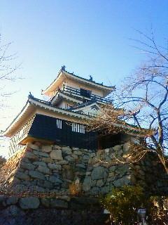 f:id:kusaboshi:20110113153100j:image