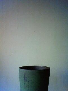 f:id:kusaboshi:20110118140700j:image