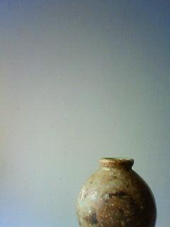 f:id:kusaboshi:20110330152800j:image