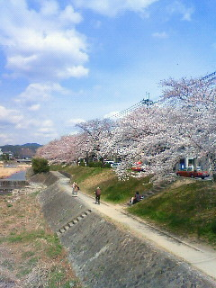 f:id:kusaboshi:20110407123100j:image