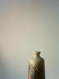 f:id:kusaboshi:20110705165800j:image