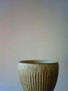 f:id:kusaboshi:20120113120800j:image