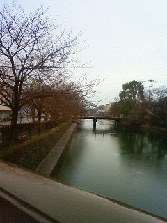f:id:kusaboshi:20120318094600j:image