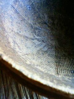 f:id:kusaboshi:20120321165500j:image