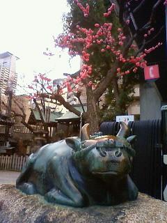 f:id:kusaboshi:20120329175600j:image