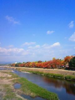 f:id:kusaboshi:20121108115700j:image