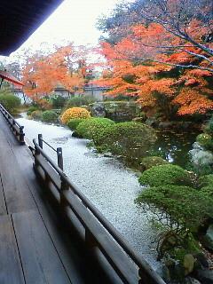 f:id:kusaboshi:20121122130600j:image