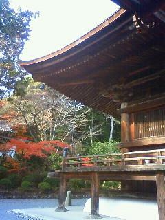 f:id:kusaboshi:20121122133200j:image