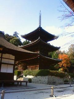 f:id:kusaboshi:20121122135400j:image