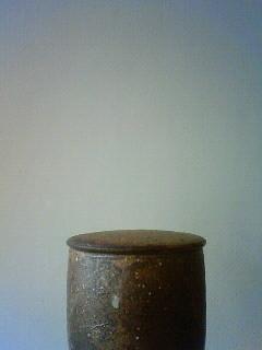 f:id:kusaboshi:20130128115700j:image