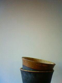 f:id:kusaboshi:20130312171100j:image