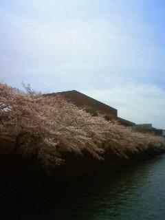 f:id:kusaboshi:20130401103200j:image