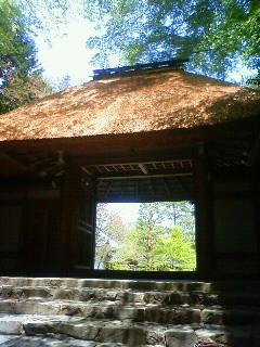 f:id:kusaboshi:20130418114000j:image