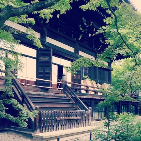 f:id:kusaboshi:20130725161924j:image:w280